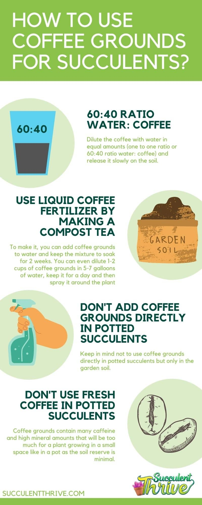 How to Use Coffee Grounds for Succulents Infographic